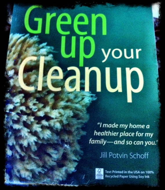 Green clean book